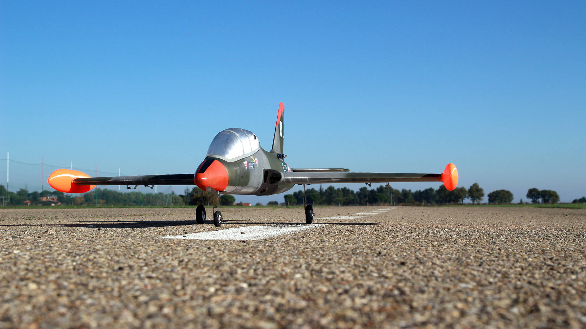rc airplane with mimetic livery ready to fly website building